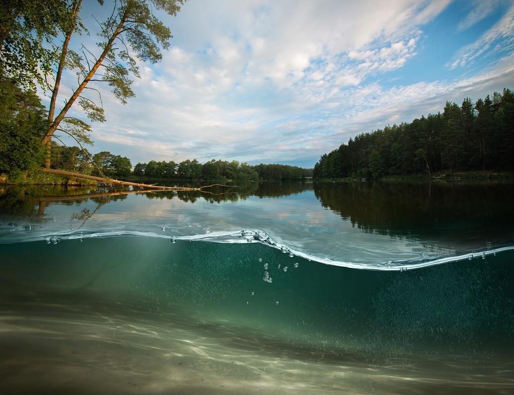 Zmineralizowane osady denne w jeziorze po zastosowaniu preparatu bakteryjnego EcoGerm Lakes