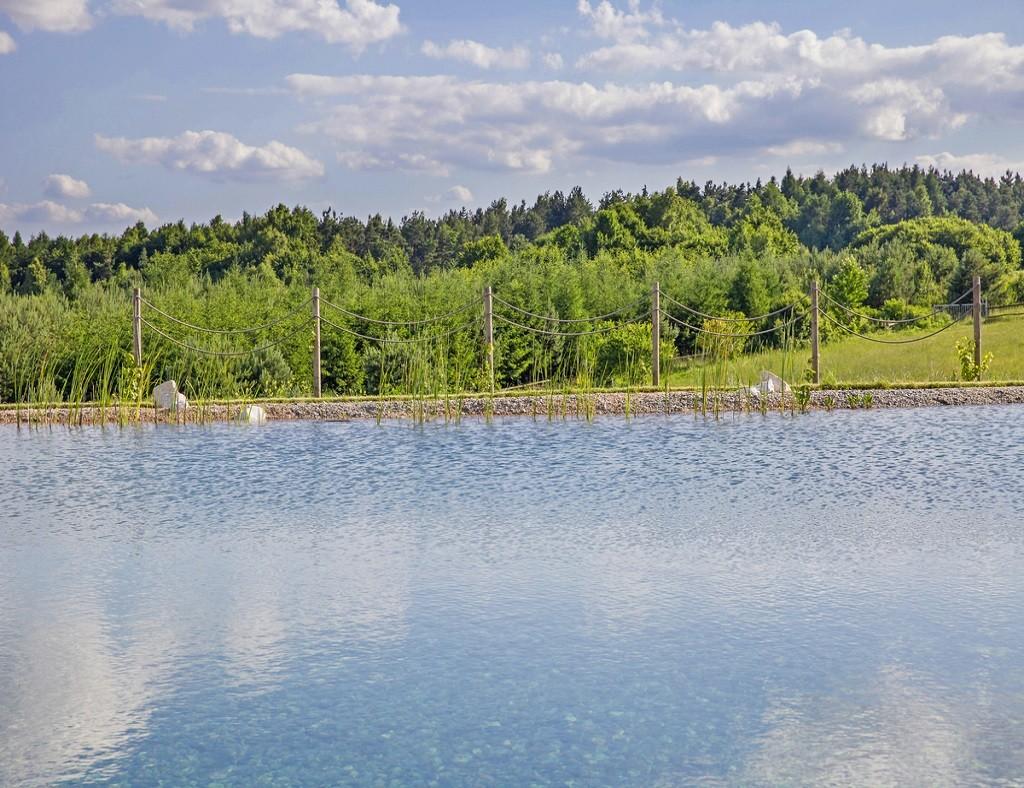 Naturschwimmbad mit Blick auf den Wald